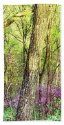 Redbud Cercis Canadensis Trees Beach Sheet