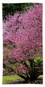 Redbuds In Action Beach Towel