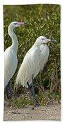 Reddish Egret Egretta Rufescens Pair Beach Towel
