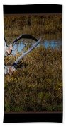 Reddish Egrets Beach Towel