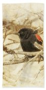 Redwing In The Wind Beach Towel