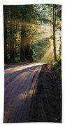 Redwood Magic Beach Towel
