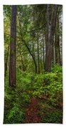 Redwoods 2 Beach Towel