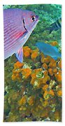 Reef Life Beach Towel by John Malone