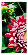 Ref Dahlias Beach Towel