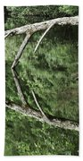 Reflected Branch Beach Towel