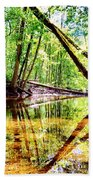 Reflected Forests Beach Towel