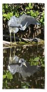 Reflected Great Blue Heron Beach Towel