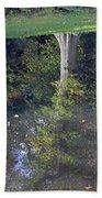 Reflected Tree Beach Towel