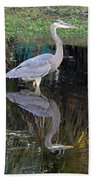Reflecting Great Blue Heron Beach Towel