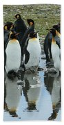 Reflecting King Penguins Beach Towel