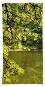 Reflecting On The Beauty Of The Woodlands Beach Towel