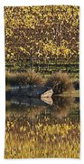 Reflection-country-victoria  Beach Towel