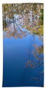 Reflection Beach Towel by Denise Mazzocco