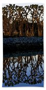 Reflections In First Light Beach Towel