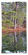 Reflections In The Pines Beach Towel