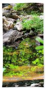 Reflections In The Stream Beach Towel