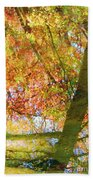 Reflections Of A Colorful Fall 001 Beach Towel