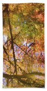 Reflections Of A Colorful Fall 002 Beach Towel