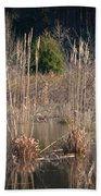 Reflections Of Winter Past 2014 Beach Towel