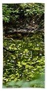 Reflective Beach Towel