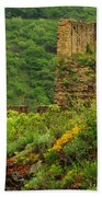 Reinfels Castle Ruins And Wildflowers In The Rhine River Valley 1 Beach Towel