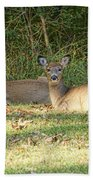 Relaxing In The Sun And Shade Beach Towel
