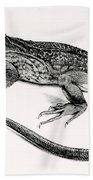 Reptile Beach Towel