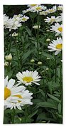 Requested Daisies Beach Towel