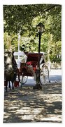 Rest Stop - Central Park Beach Towel