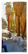 Rest Stop In Andreas Canyon Trail In Indian Canyons-ca Beach Towel