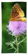 Resting On A Thistle Beach Towel