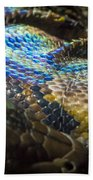 Reticulated Python With Rainbow Scales 2 Beach Towel