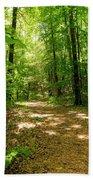 Wooded Path 16 Beach Sheet