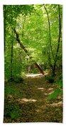 Wooded Path 17 Beach Towel