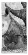 Rhino And Baby Beach Towel