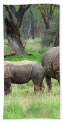 Rhino Family Beach Towel