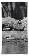 Rhino Nap Time Beach Towel