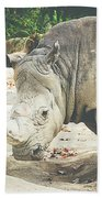 Rhino Beach Towel