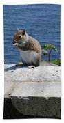 Rhode Island Squirrel Beach Towel