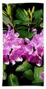 Rhododendron Closeup Beach Towel