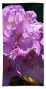 Rhododendron In The Morning Light Beach Towel