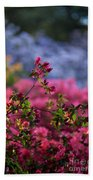 Rhododendron Pink Dream Beach Towel