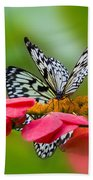 Rice Paper Butterflies Beach Towel