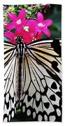 Rice Paper Butterfly On Pink Beach Towel