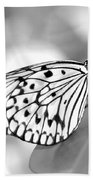 Rice Paper Butterfly Resting For A Second Beach Towel