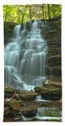 Ricketts Glen Cascading Falls Beach Sheet