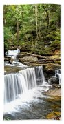 Ricketts Glen Delaware Falls Beach Towel