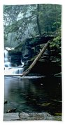 Ricketts Glen Falls 016 Beach Towel