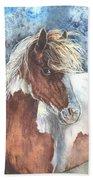 Pinto Pony Beach Sheet
